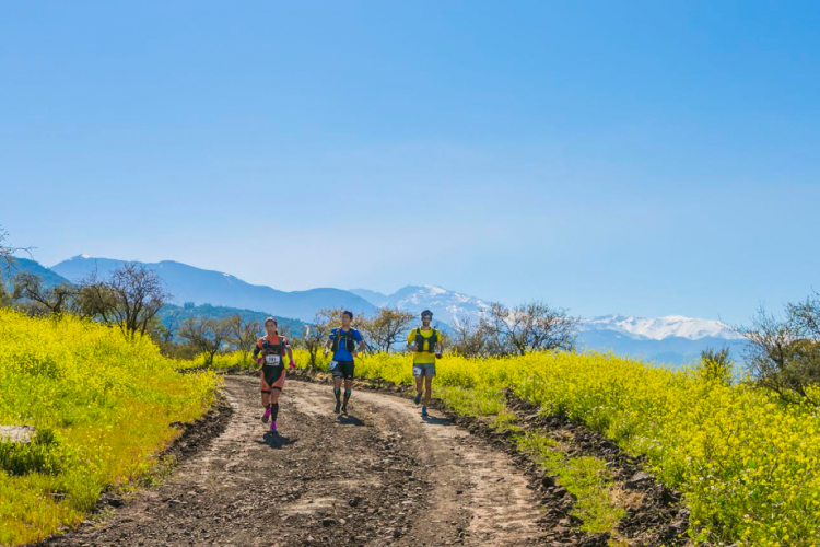 THE NORTH FACE ENDURANCE CHALLENGE CHILE – 100 MILLAS